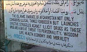 Taliban poppy ban message